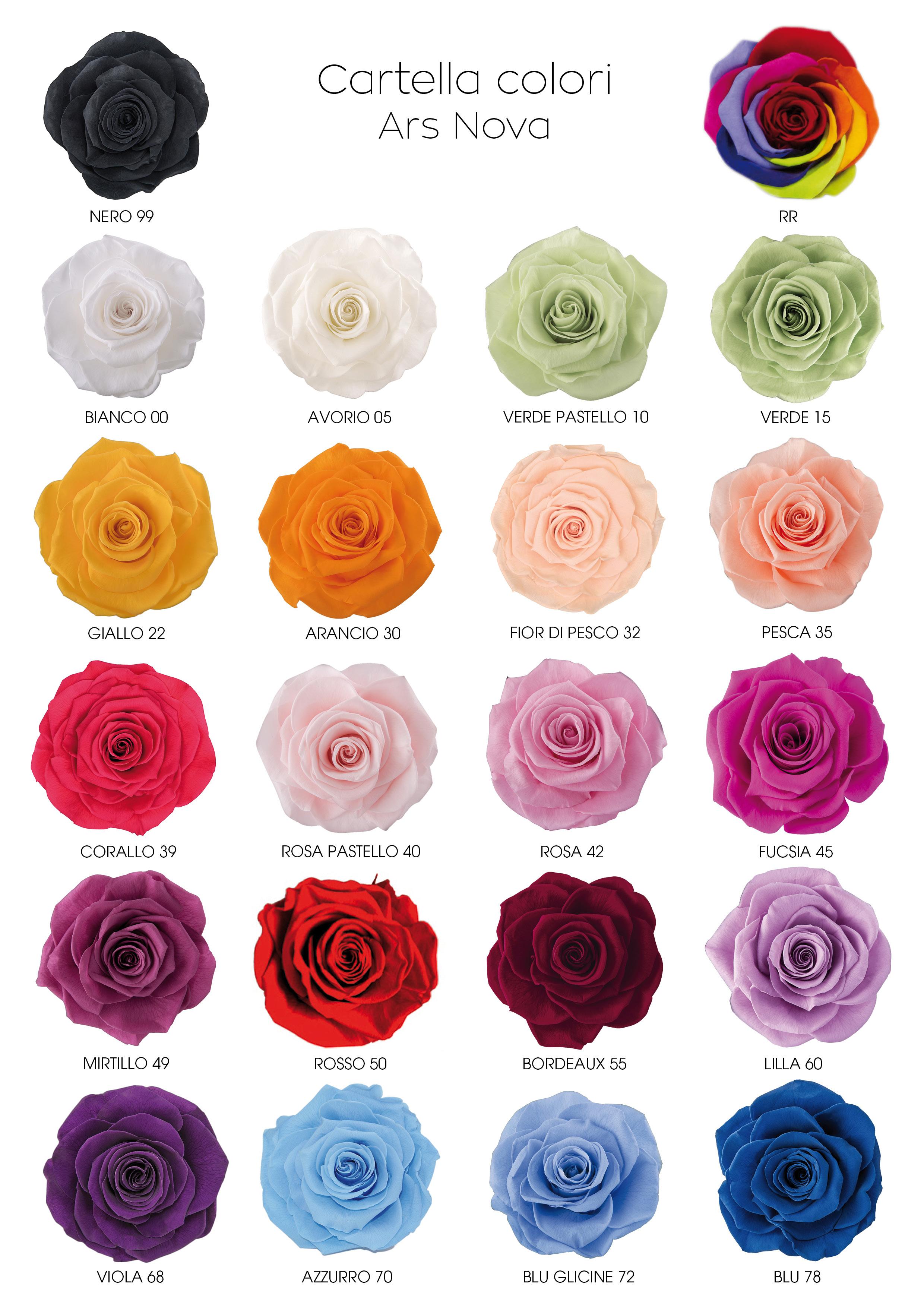 Rose stabilizzate sfuse